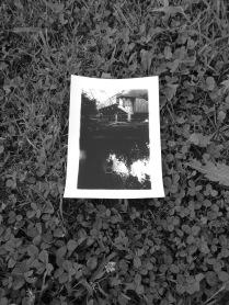 5x7 Inch Print